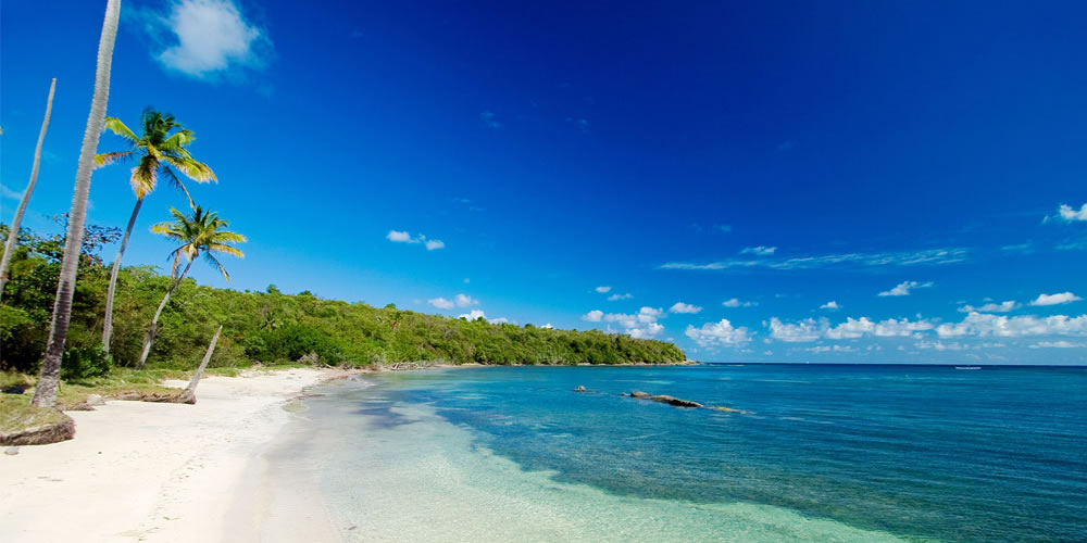 New WTTC report confirms Grenada as a golden opportunity in the globe's fastest growing sector