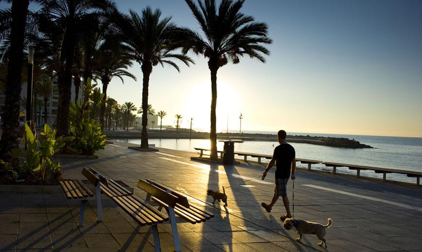 Belgian buyers head to Spain's Costa Blanca as sales increase by 156%