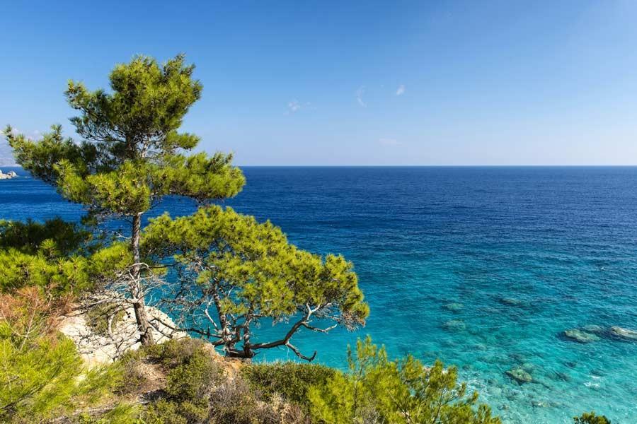 Top of the Props: Overseas interest strengthens in Cyprus